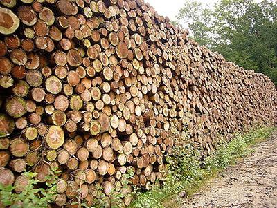 Marché CSPS réseau de chaleur bois